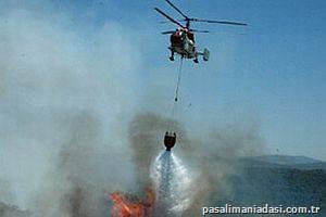 Paşalimanı Adasında korkutan Yangın...